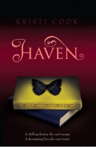 HAVEN young adult novel