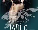 Wild Hunt, Nine Worlds 3