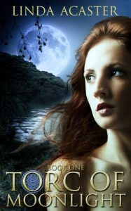 Torc of Midnight paranormal romance